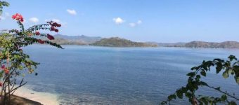 for sale land gili gede sekotong lombok