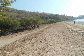 sumbawa land-beach-Ayip-04 , Sumbawa Property for sale ,NTB property for sale ,sumbawa land and property